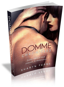 Domme Chronicles hard cover mockup