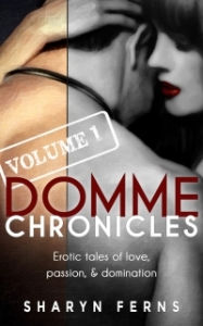Domme Chronicles Vol 1 small